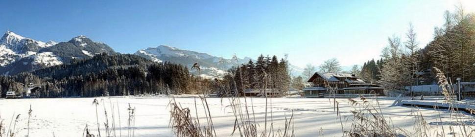 banner-schwarzsee-2.jpg